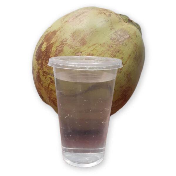 Agua de Coco Vaso 450 ml